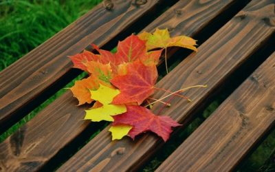 Are You Changing By The Seasons Or By The Day?